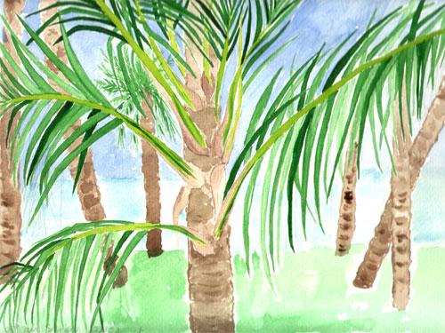 palmes.jpg